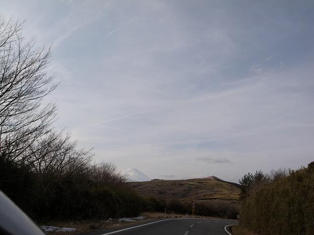 RIMG3256(静岡県 伊東から御殿場への山道の途中 熱海のあたりの山道にて)s-640 20110223