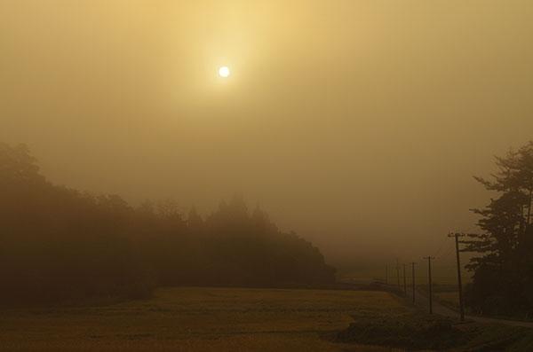 東和町毒沢の朝霧