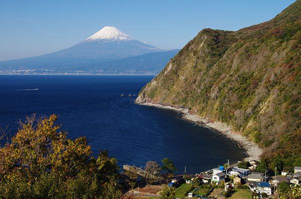 沼津市井田からの富士山