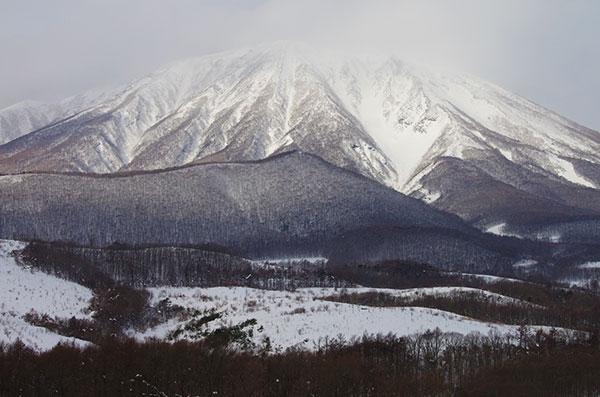 春子谷地から初冬の岩手山