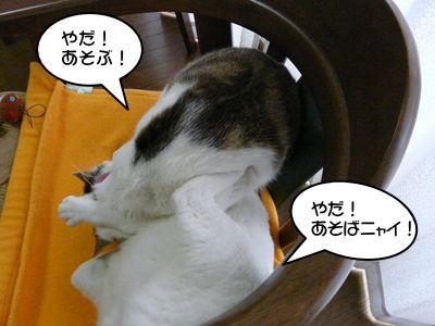 image-16.jpg