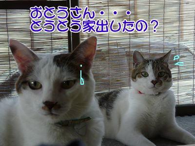 image-yuusanta1.jpg
