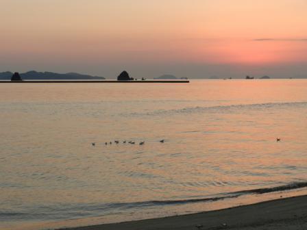 立岩海岸 夕景 10
