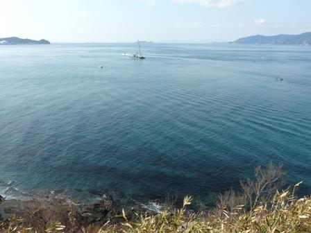 大角海浜公園にて 8