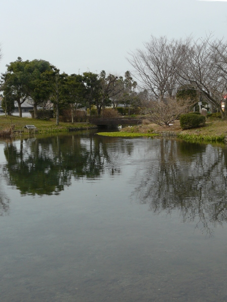 ひょこたん池公園 池