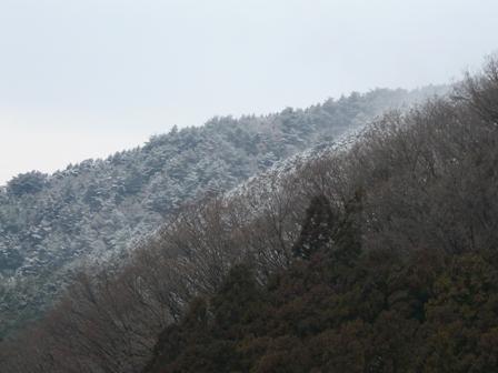 雪景色 三坂道路にて 4