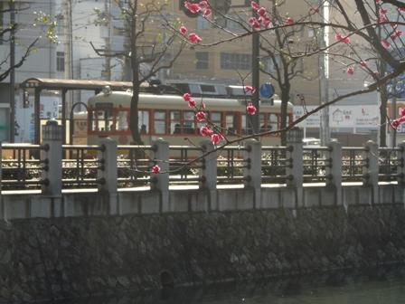 城山公園・堀之内地区 梅&電車