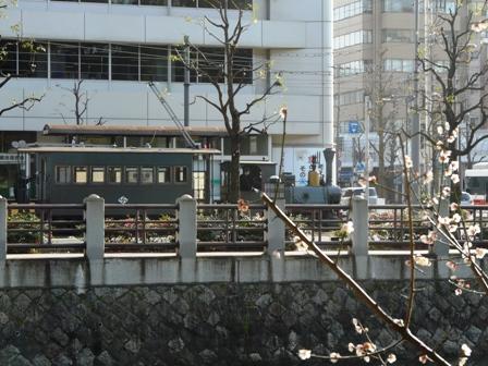 城山公園・堀之内地区 梅&坊っちゃん列車