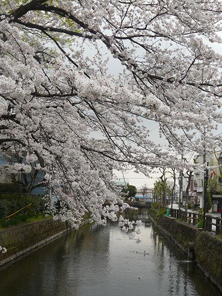 蔵の街・栃木 2
