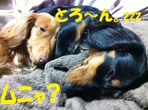 IMG_0504.jpg