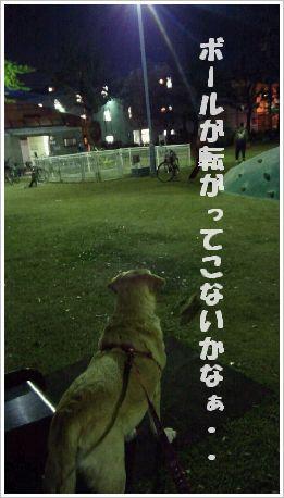 ボール狙いの目線!