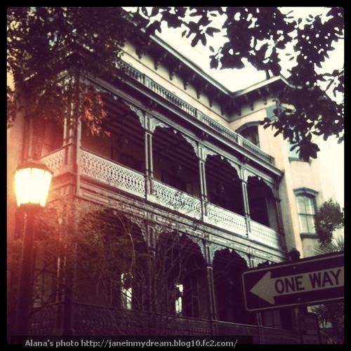 Savannah4.jpg