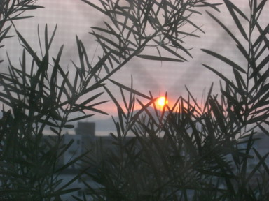 7,7の夕日