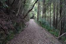 ばんちゃんの旅案内 -日本全国自走の旅--金田城登山道(旧軍道)