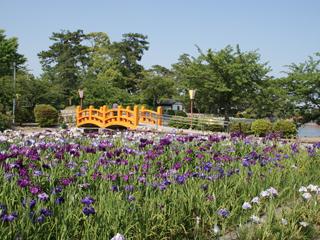 桑名城・花しょうぶ園