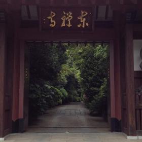wagashi 5-8