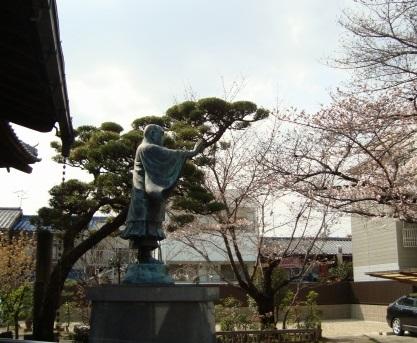 稲荷山桜 057