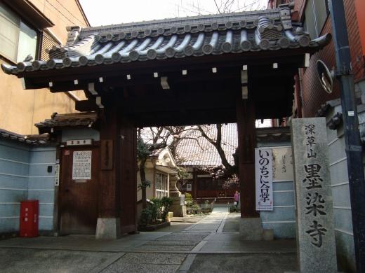稲荷山桜 047
