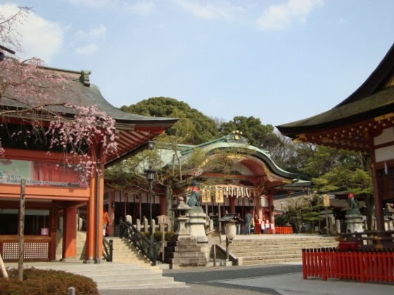 稲荷山桜 086