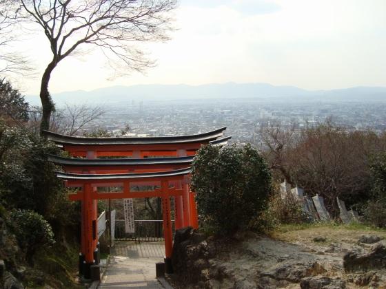 稲荷山桜 112