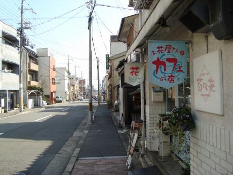立本寺桜 027