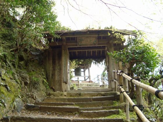 御所嵐山桜2010 195