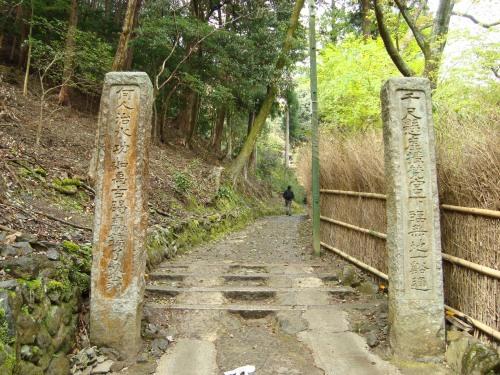 御所嵐山桜2010 187