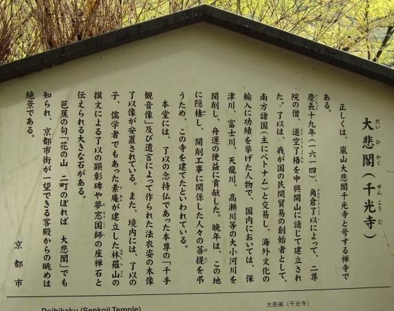 御所嵐山桜2010 186