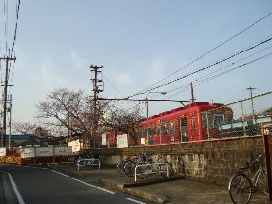 高野山和歌山 279