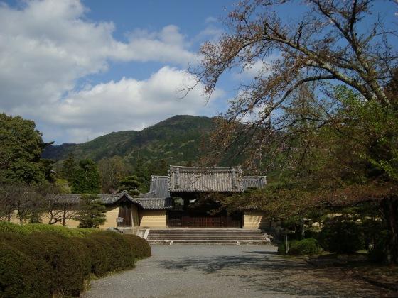 随心院京阪百年 133