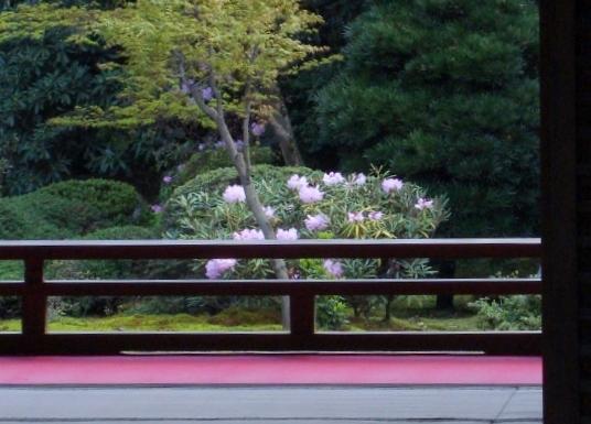随心院京阪百年 106