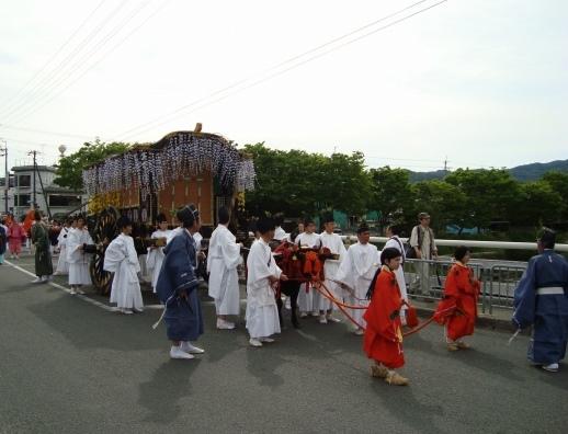 葵祭カキツバタ 035