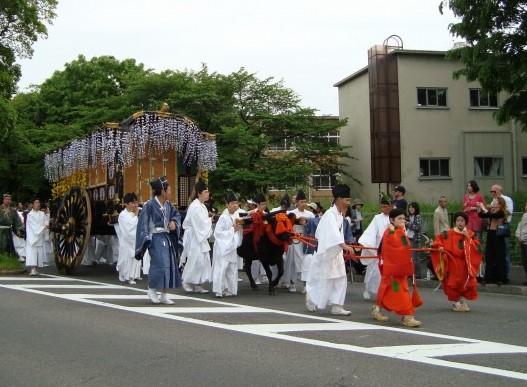 葵祭カキツバタ 026
