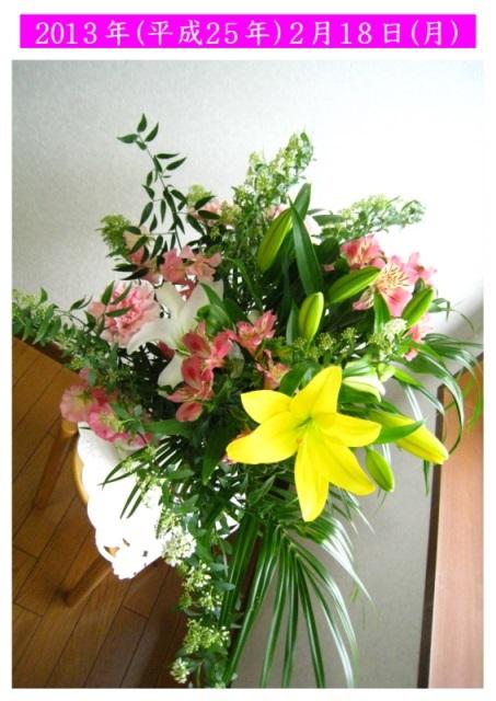 2.18花の写真