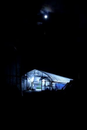 夜に浮かび上がるハウス
