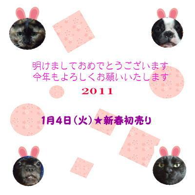 11_1_1_1.jpg