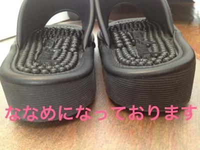 fc2blog_201301241148424ed.jpg