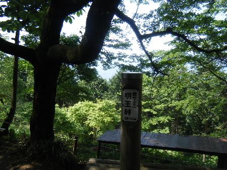 2010_0522高尾0033