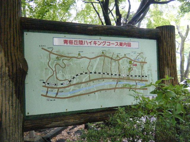 2010_0529高水山0019