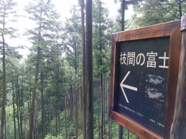 2010_0529高水山0033