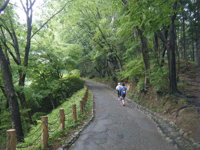 2010_0529高水山0028