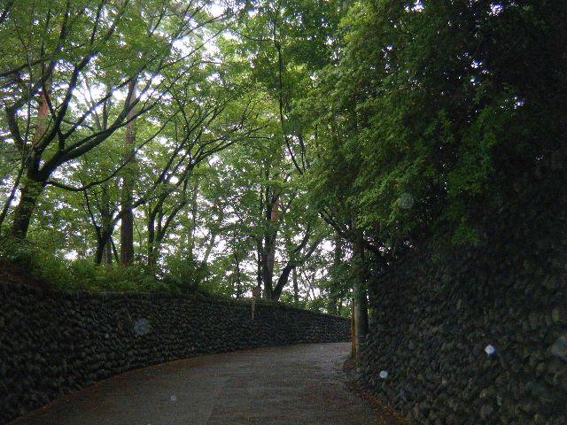 2010_0529高水山0025