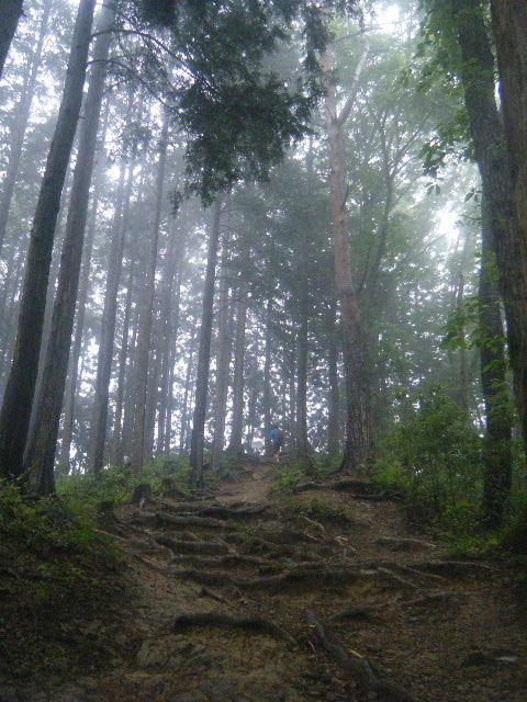 2010_0529高水山0047