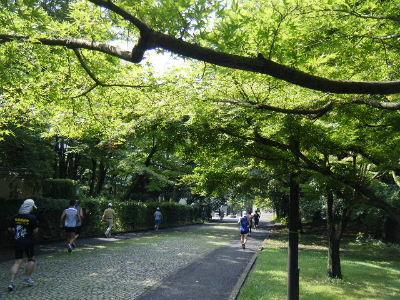 2010_0704所沢耐久0026