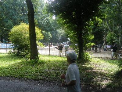 2010_0704所沢耐久0031