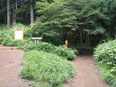 2010_0711高尾0016