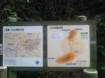 2010_0711高尾0022