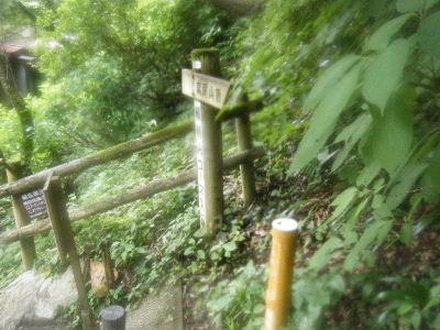 2010_0711高尾0033