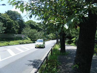 2010_0717アミノ駅伝0004