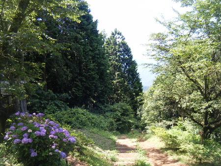 2010_07190719高尾山0034